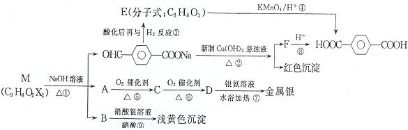 绿色化学对化学反应提出了原子经济性(原子节约)的概念及要求。理想的原子经济性反应中原料分子中的所有原子全部转变成所需产物,不产生副产物,实现零排放。以下反应中符合绿色化学的是( ) A. 乙烯与氧气在银的催化作用下生成环氧乙烷(结构简式如下)  B. 利用乙烷与氯气反应,制备氯乙烷 C. 以苯和乙醇为原料,在一定条件下生产乙苯 D. 乙醇与浓硫酸共热制备乙烯