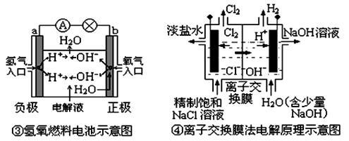 模拟电极电路图