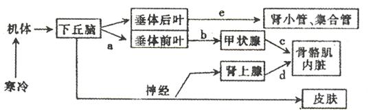 电路 电路图 电子 原理图 559_162